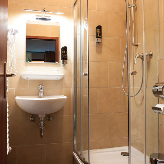 WC mit Dusche in Pension Odin 540x540 - Double room